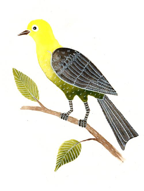 žlutý ptáček copy